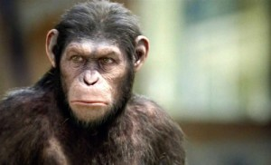 Rise of the Planet of the Apes (Caesar)