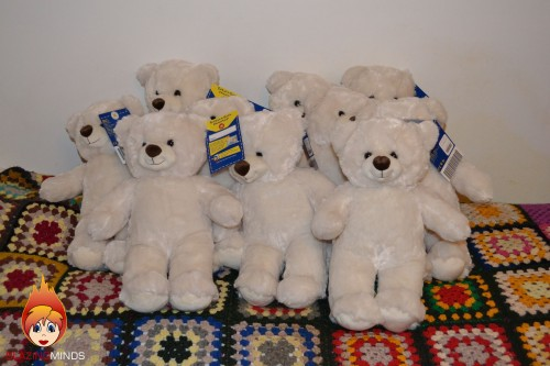 Build A Bears Ready For New Homes