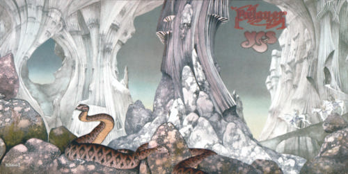 Relayer full cover