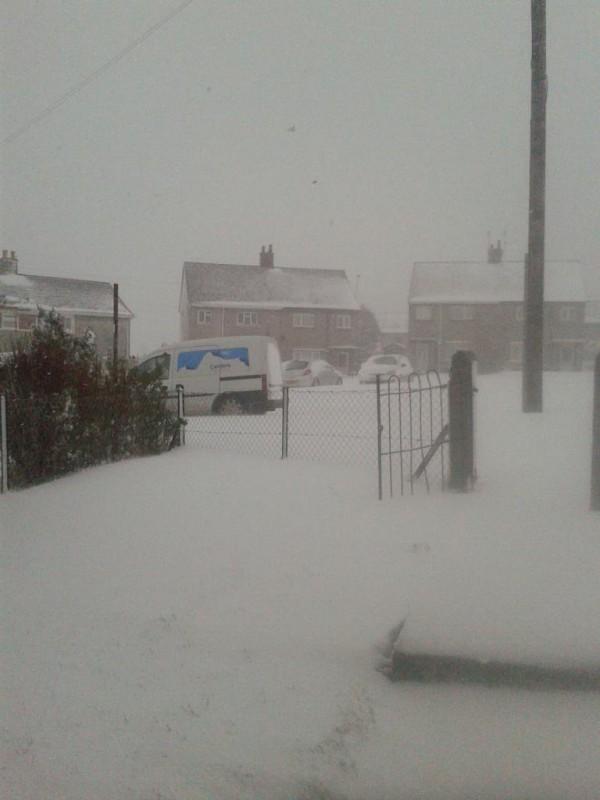 Snow in Trelogan - Photo by Michelle