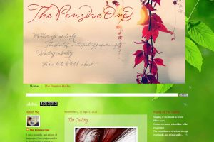 Blogger Interview With The Pensive One