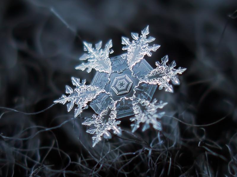 Christmas Snow Flake