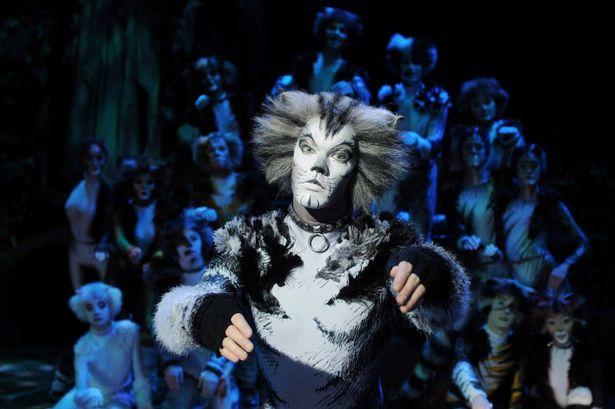 Cats – A Memorable Performance at Venue Cymru