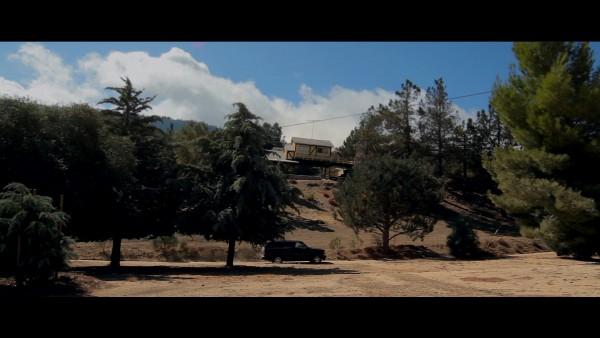 The Lost Tree Cabin