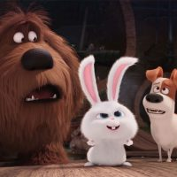 The Secret Life of Pets-HDR