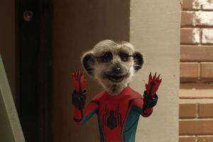 Meerkat Movies Launch New TV Advert for Spider-Man: Homecoming