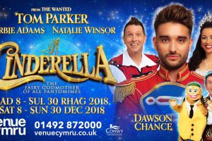 You Shall Go To The Ball, Thanks to Cinderella at Venue Cymru – Review
